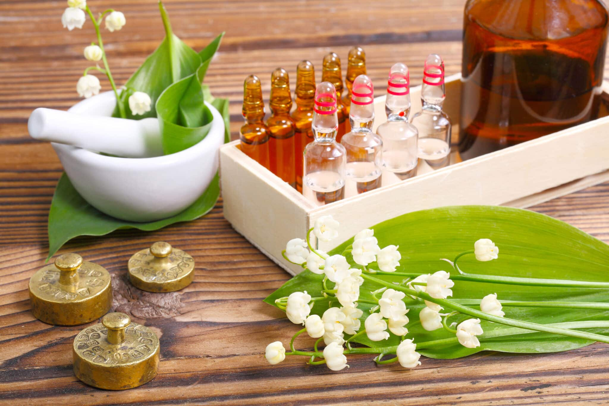 naturopathy-doctor-qlook